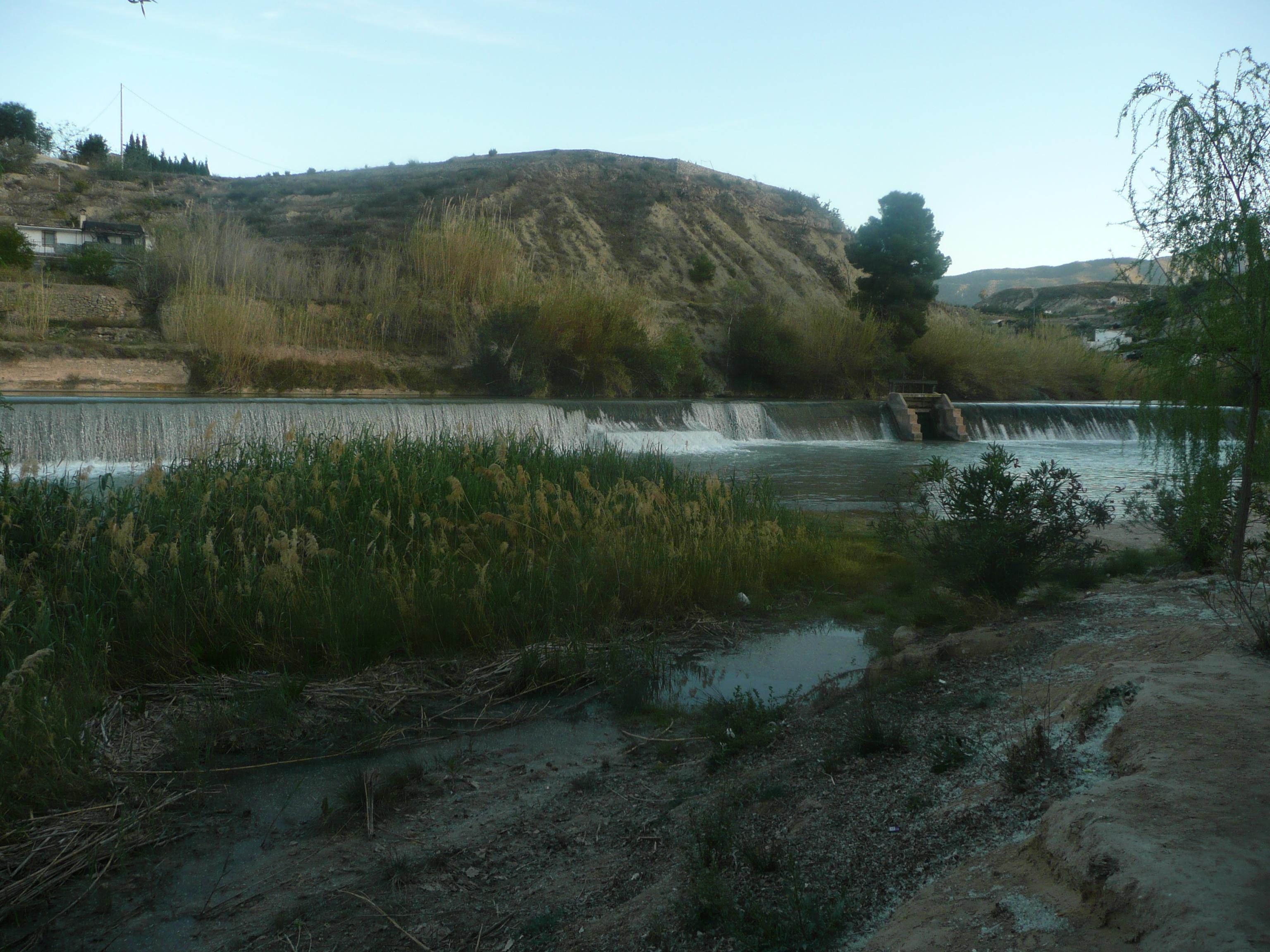 Río Segura en Abarán (paraje del Jarral)