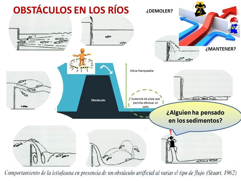 Obstáculos ríos