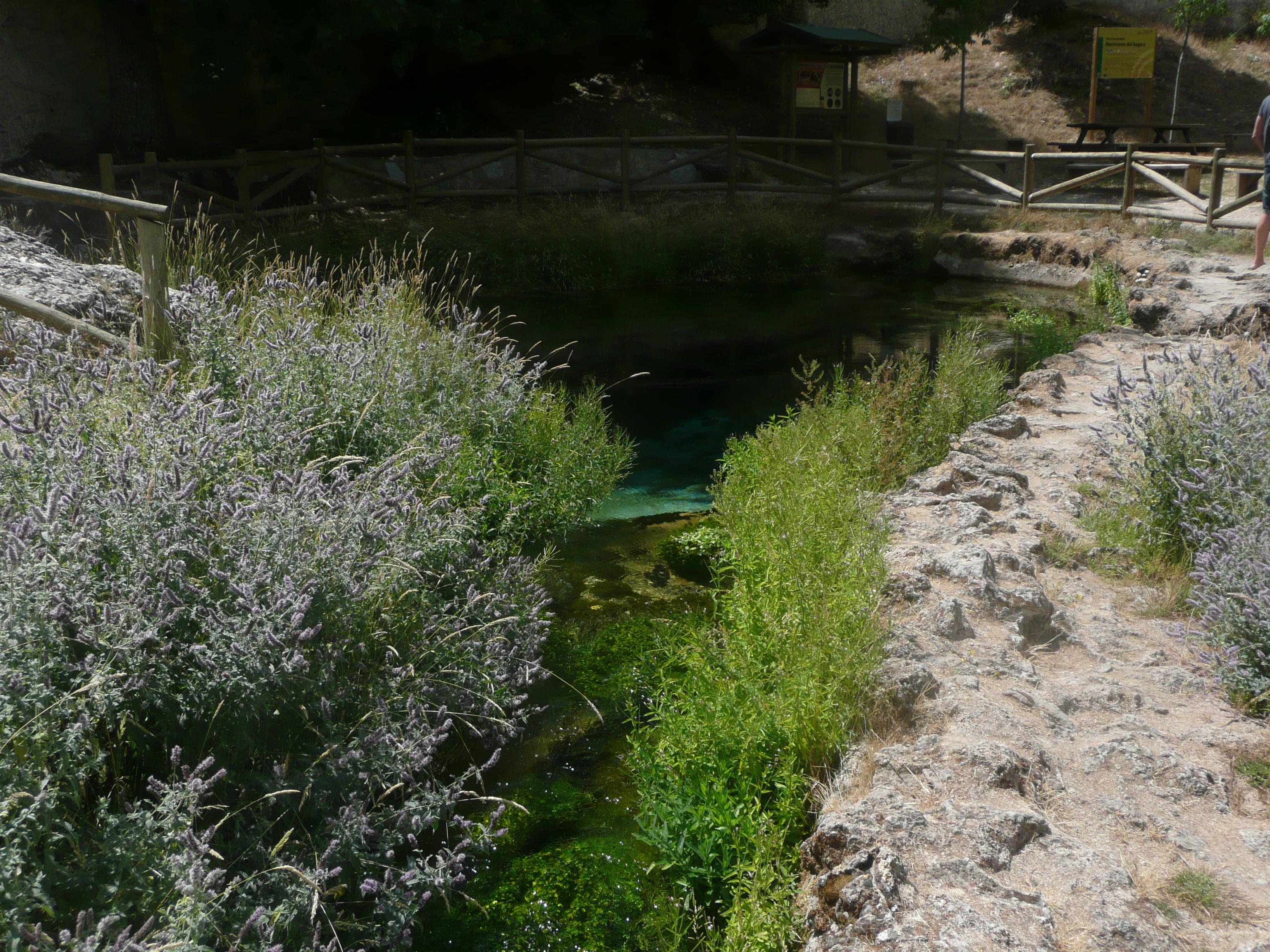 Nacimiento río Segura Pontones (Jaén)